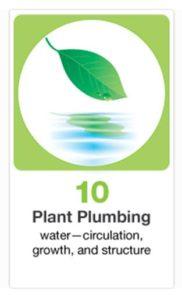 10plumbing