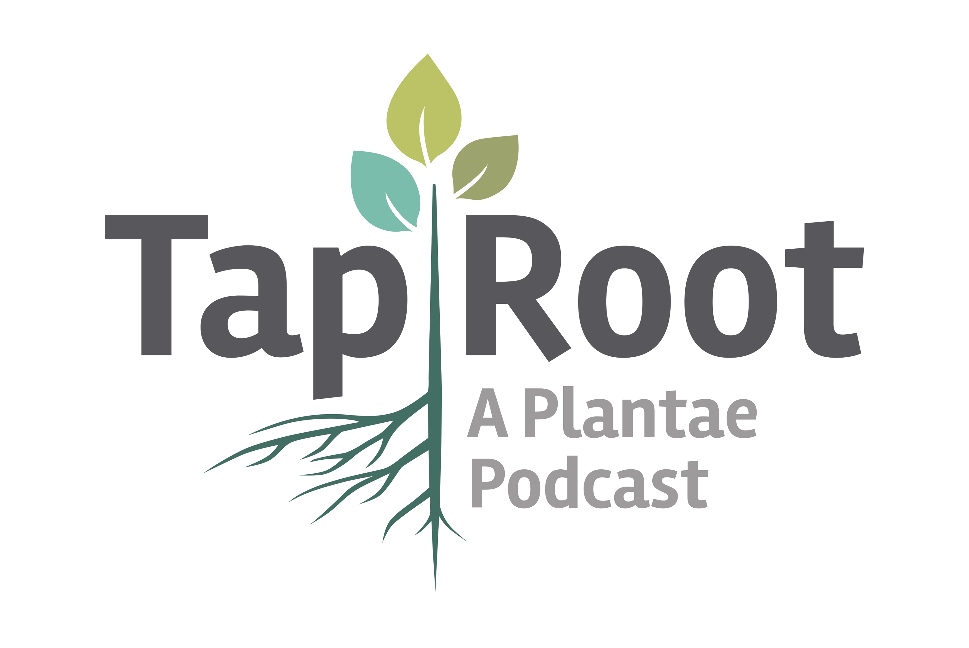 Plantae | The Taproot | Plantae