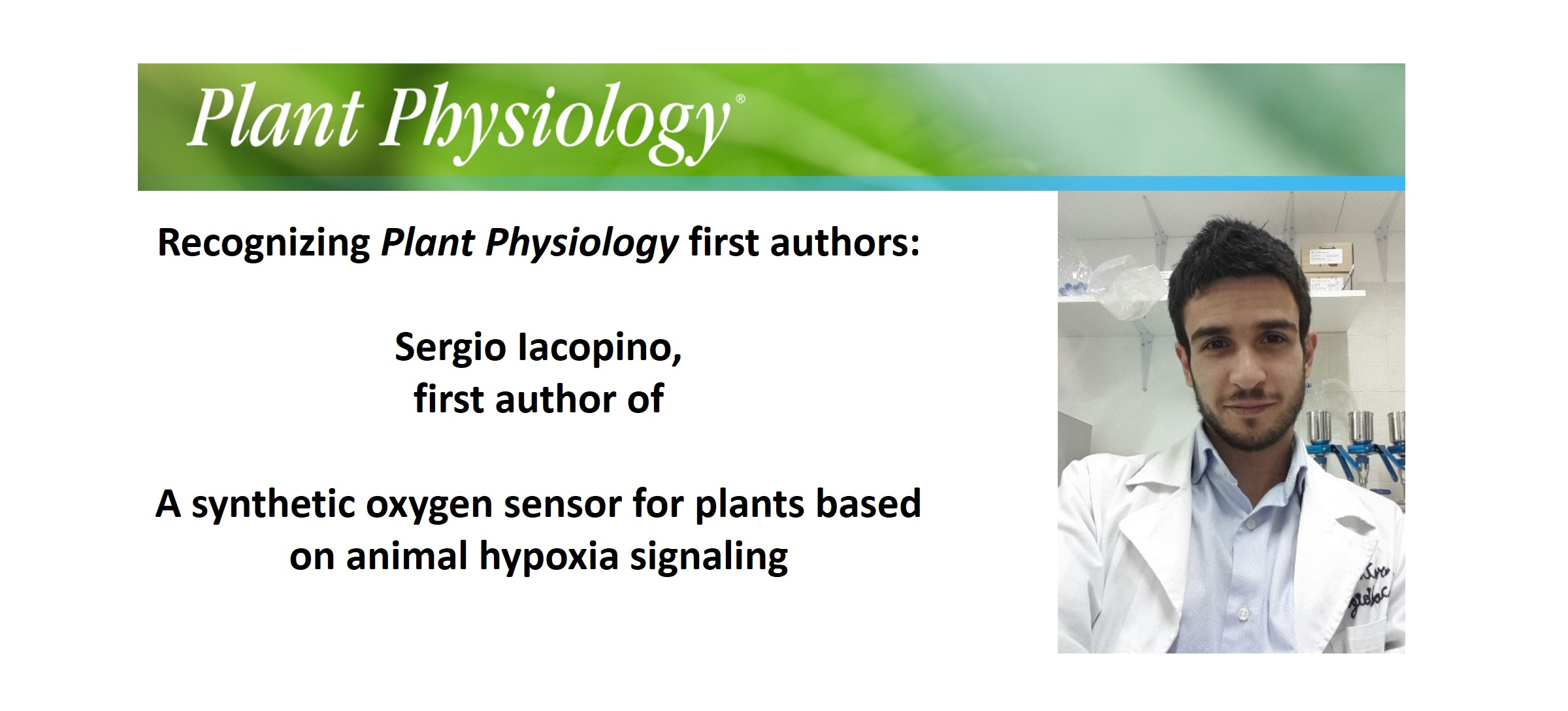 Plantae Recognizing Plant Physiology First Authors Sergio Animal Cell And Plants On Pinterest Iacopino