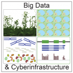 Plantae Big Data CI logo